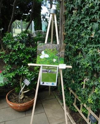 Trilliums painting displayed at Royal Botanical Gardens
